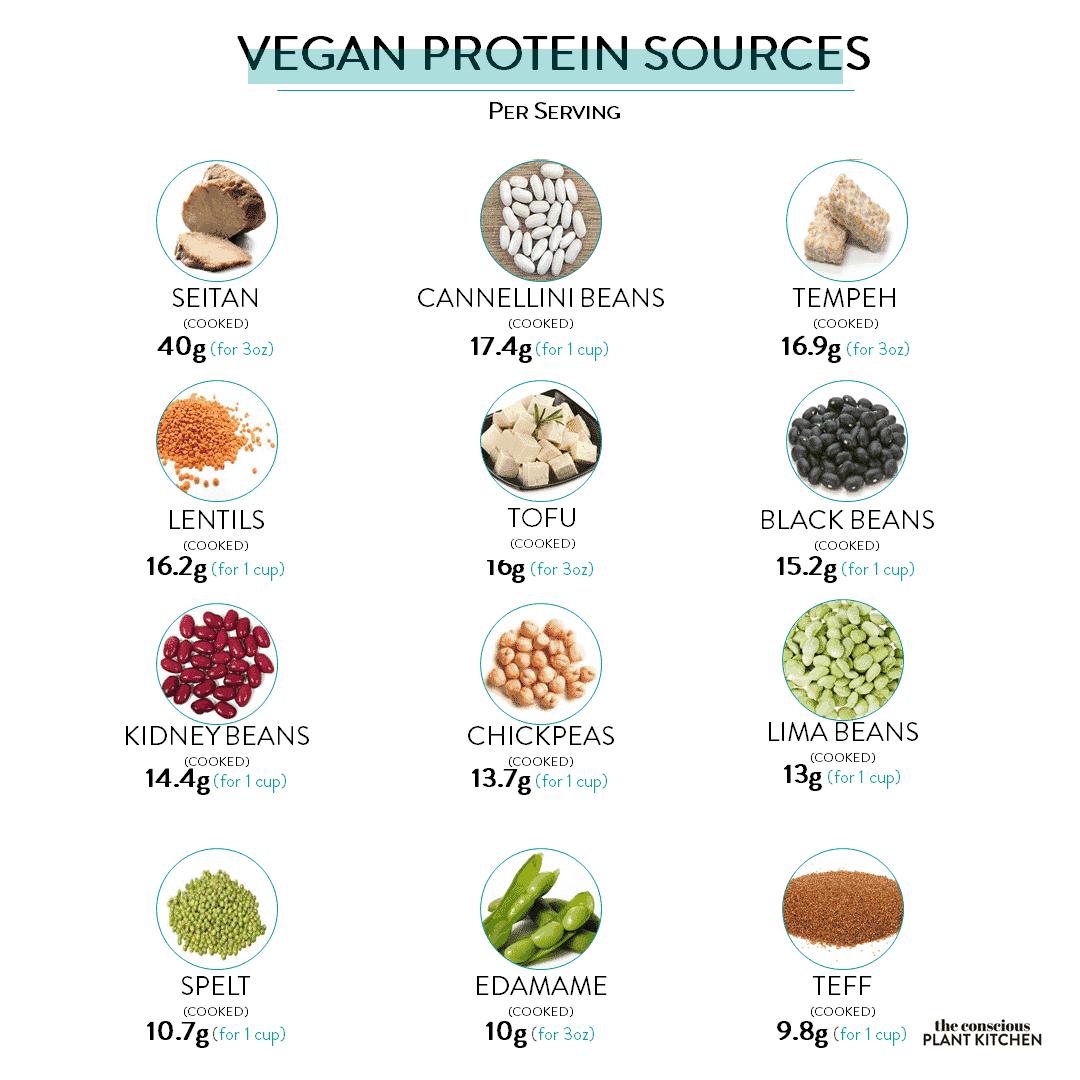 Top 12 Vegan Protein Sources