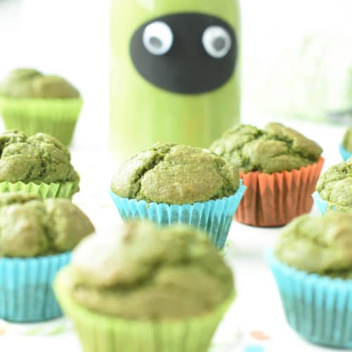 Monster Muffins Toddler