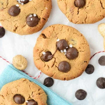 chocolate chip protein cookies recipe